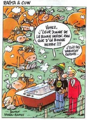 Cannabis rasta page 2 - Dessin vache humour ...